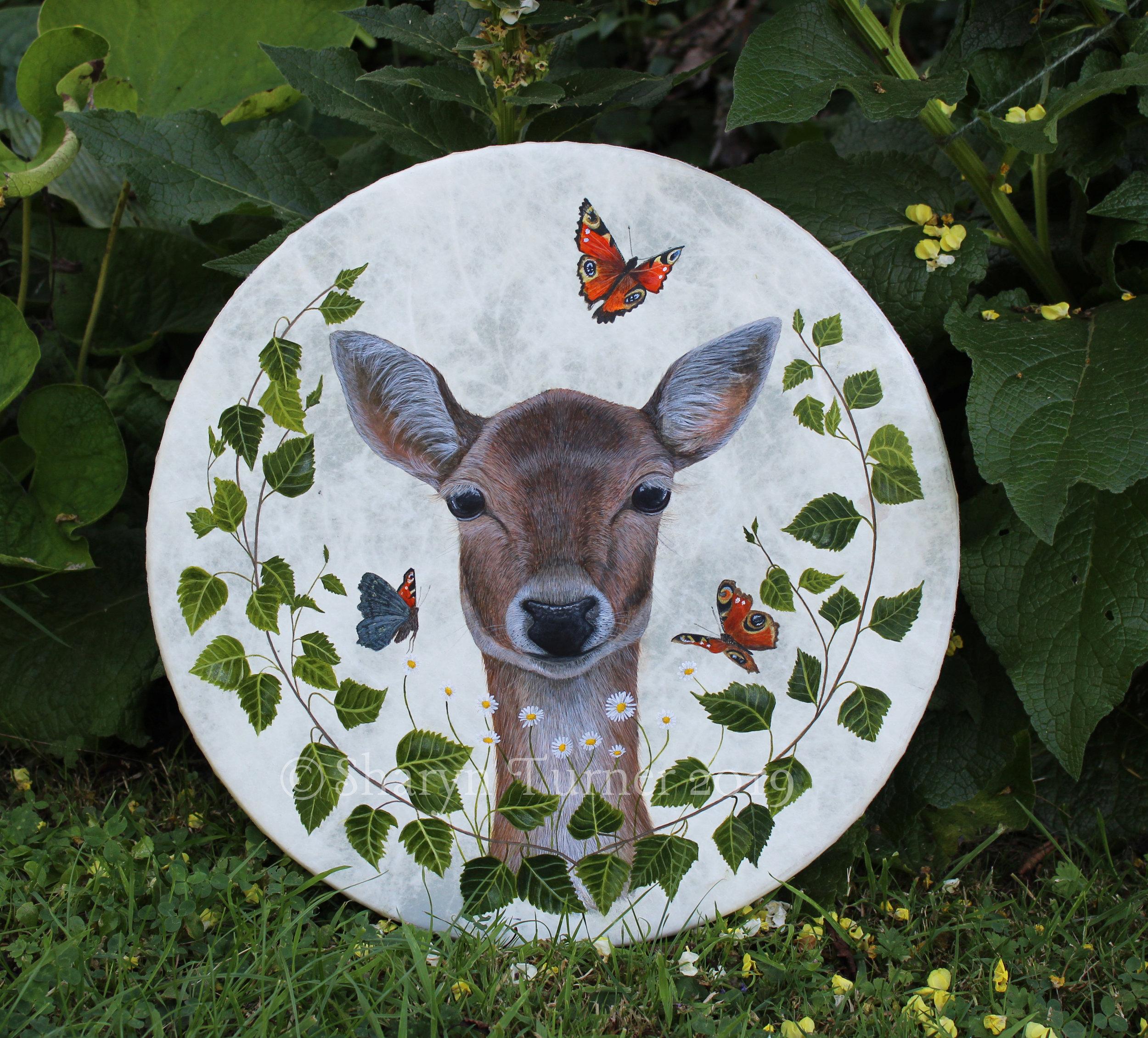 """Fallow Deer Doe 16"""" Remo"""