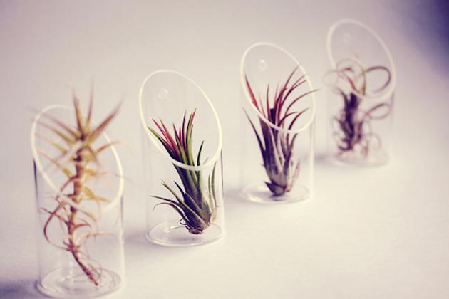 Petit-Beast-jellyfish-planters-feel-desain-Cathy-Van-Hoang01.jpg