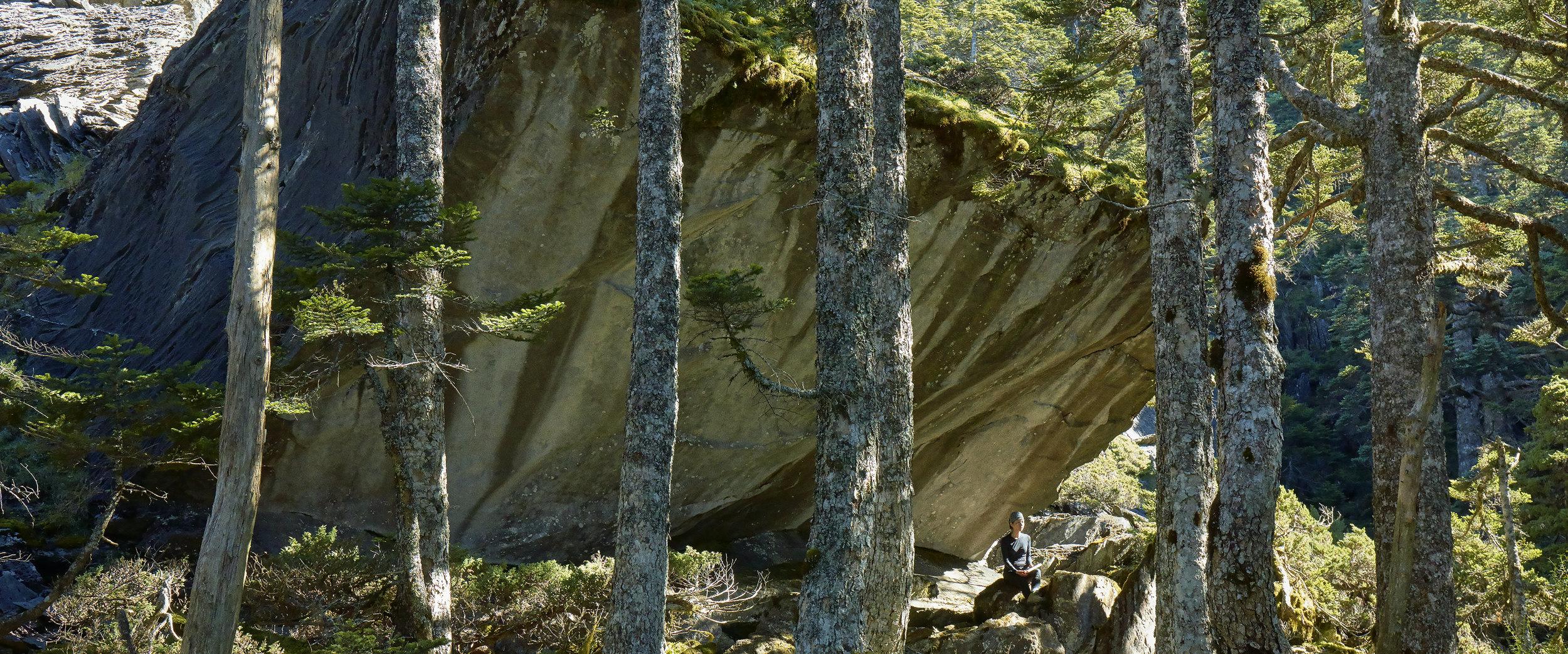 在山上,視野更加清澄透亮,每一秒鐘都是一個世界。隨著海拔升降展現不同姿態的林貌與生態、一望無際的草原邊坡、雲氣蒸騰的巨石稜線、高山溪谷匯聚的湛藍水潭與石瀑,旅者帶著過往的生命經驗和生活軌跡,各自擁有其觀看的方式,定位山與自身的相對關係,藉由生活科技的輔助,數位也能描繪山陵,展開對於山的探索。