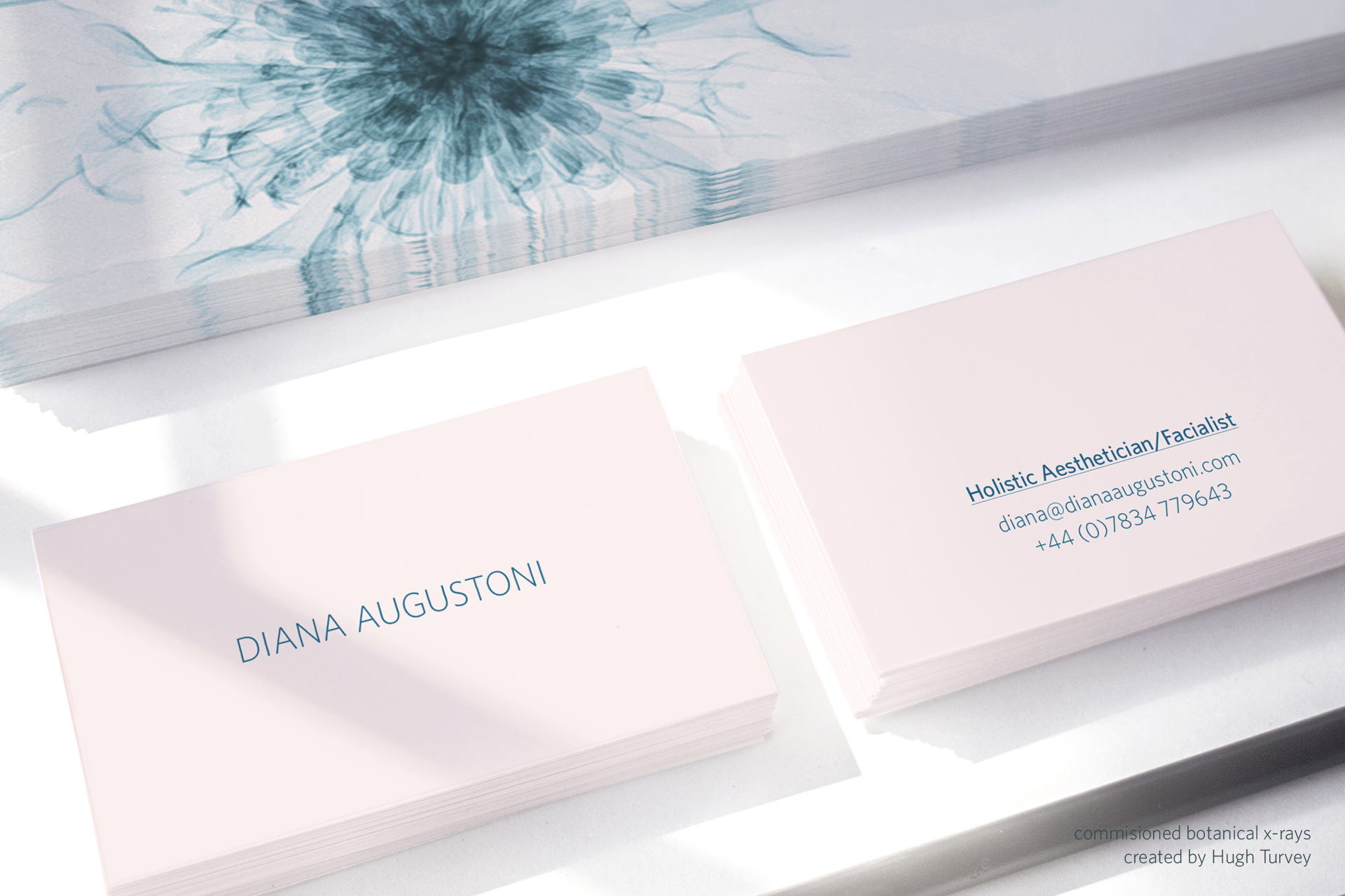leesimmons-home-diana-augustoni-branding-visual-identity-design.jpg