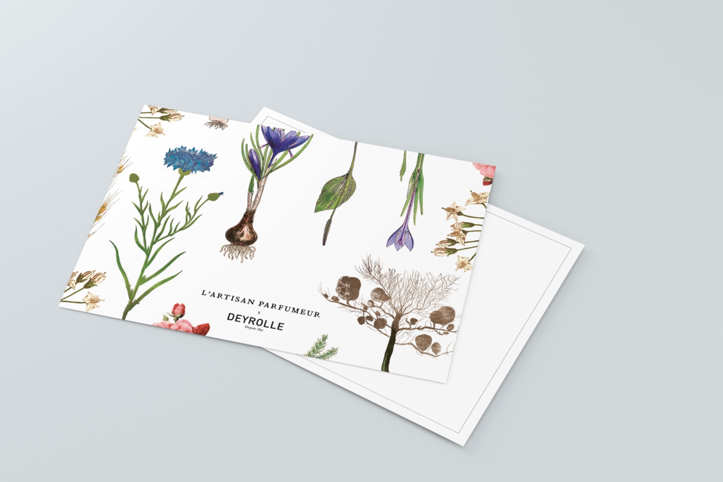 lee-simmons-design-ltd-LAP-invite-01.jpg