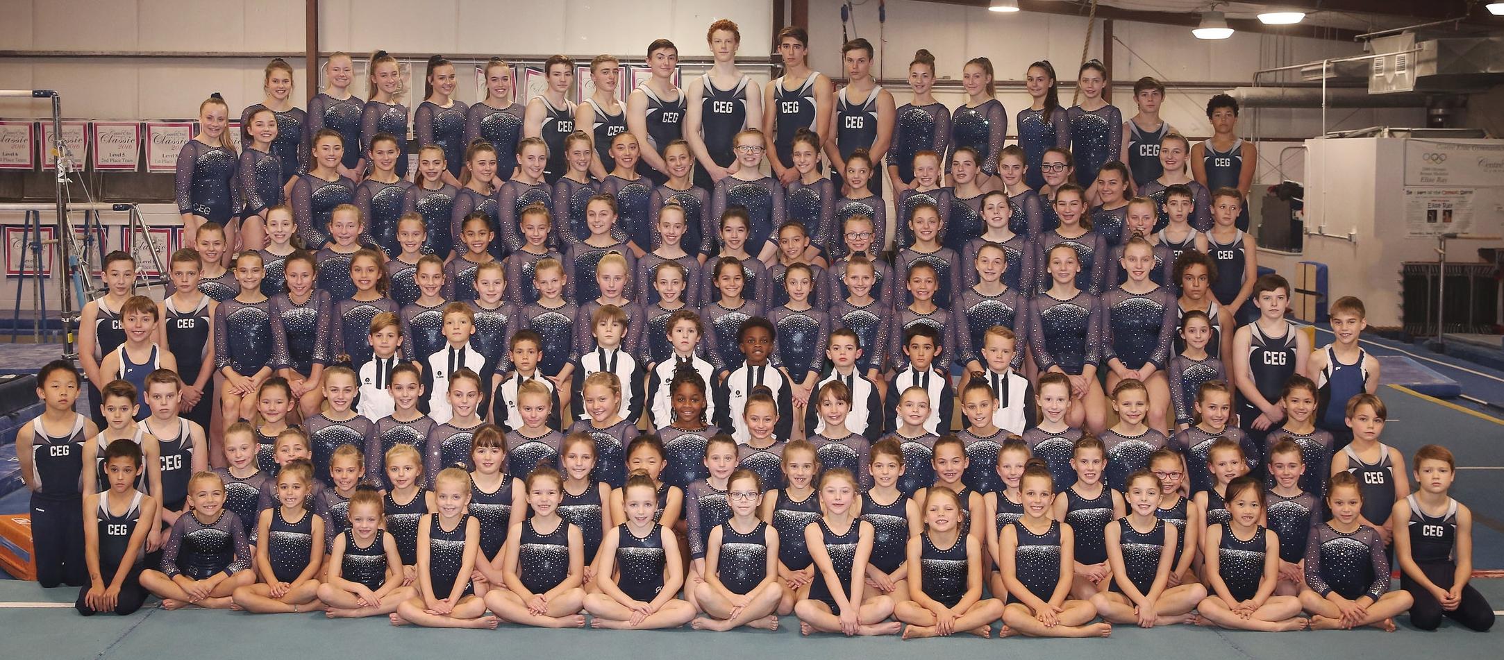 Centre Elite Gymnastics