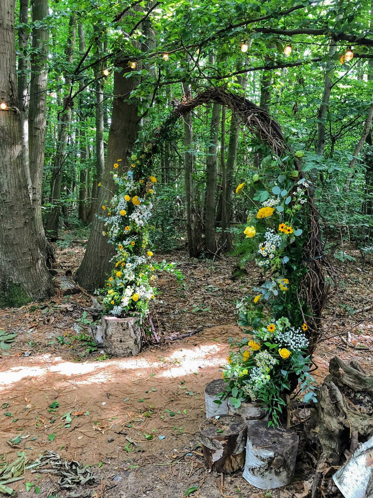 Archway at The Dreys in the woodland