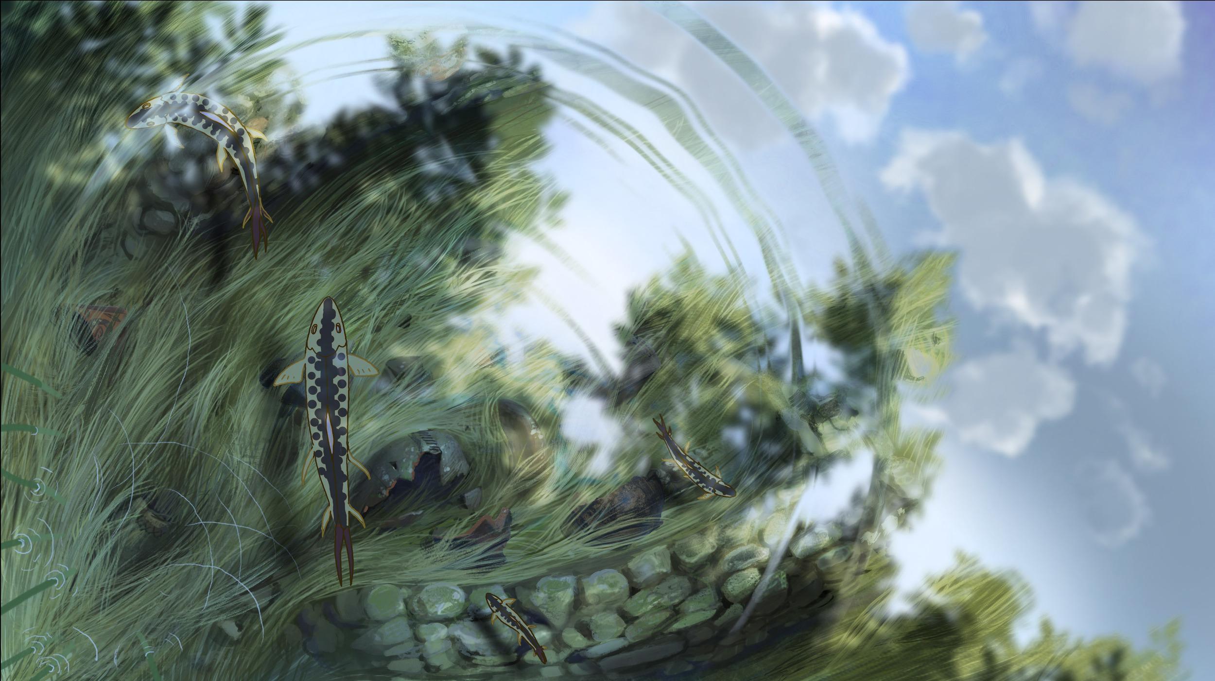 background_fish.jpg