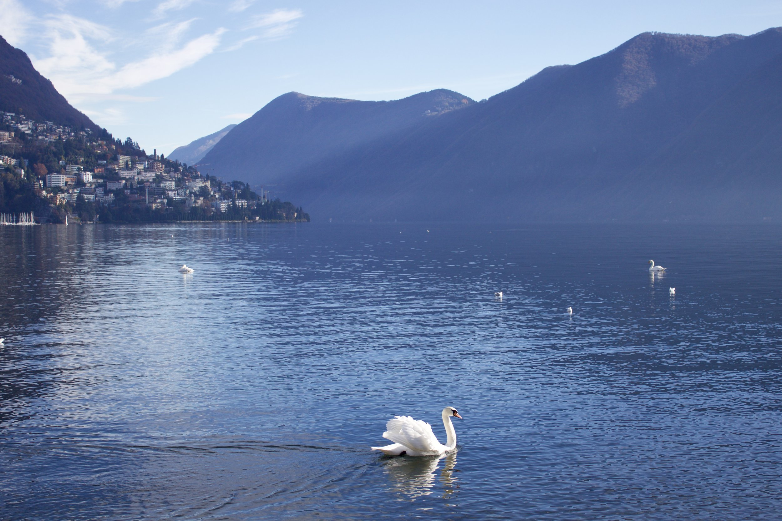 Samantha McNeil Blog - Lugano Switzerland