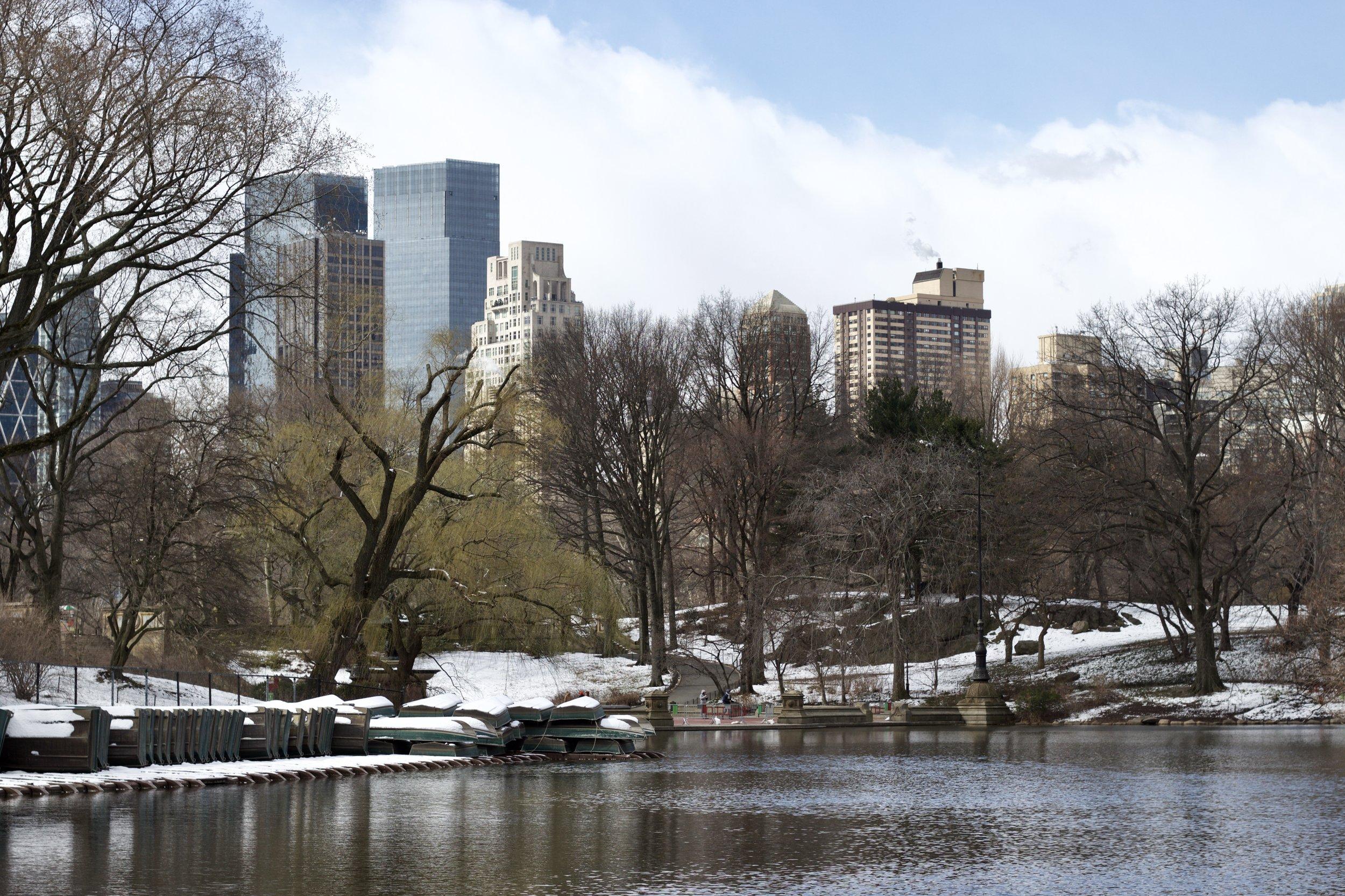 Samantha McNeil Blog // The Lake in Central Park