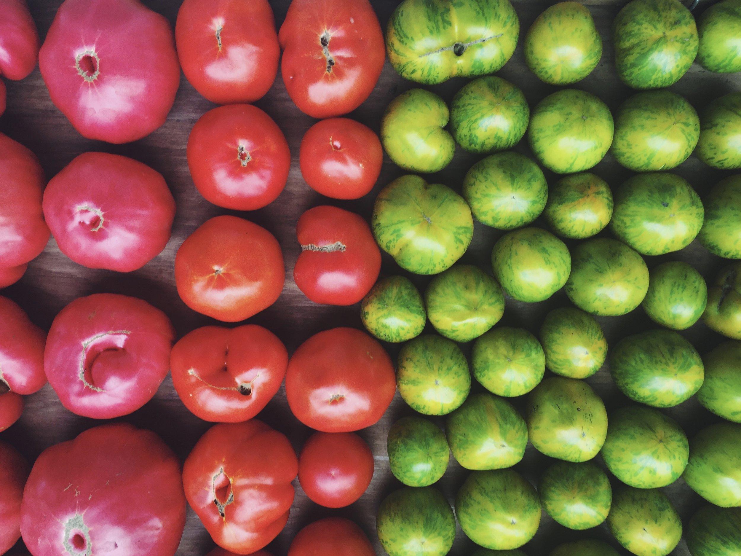 It's tomato season y'all...