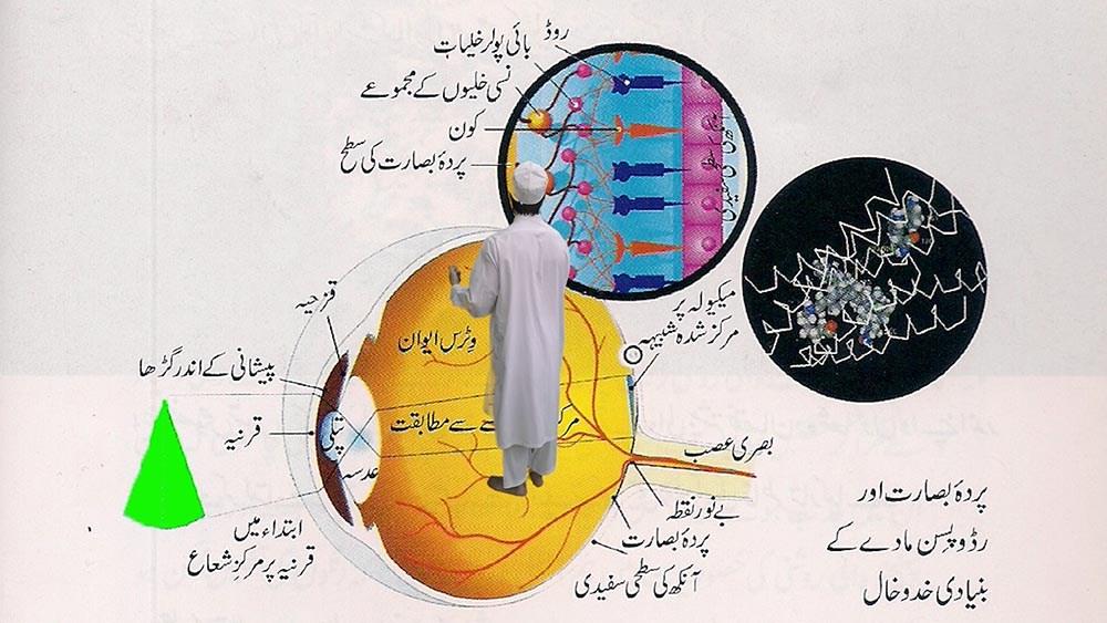 Majeed_Umber_9.jpg