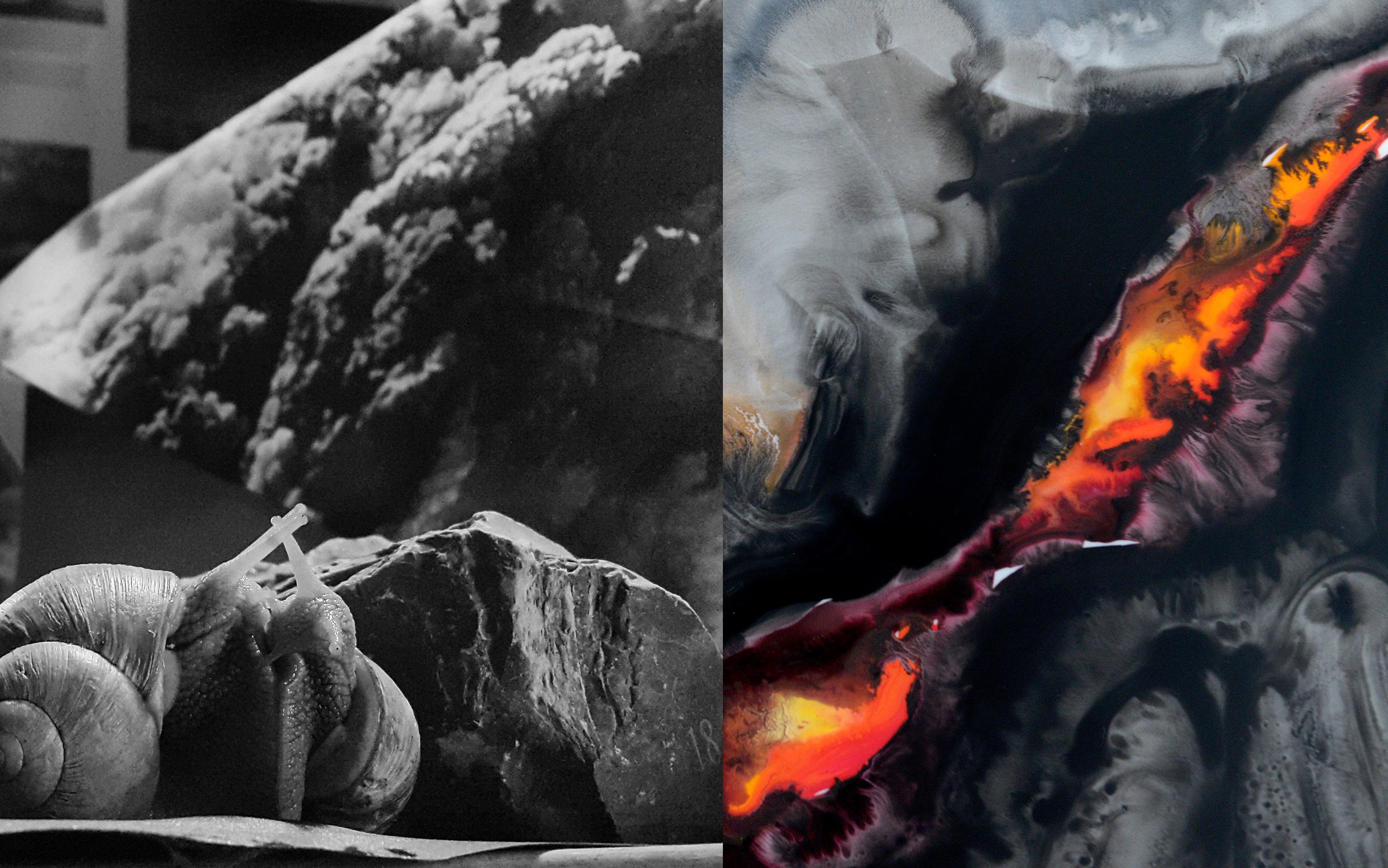 "Left: ""Snail"", Caitlin Berrigan Right: ""Detail from Kilauea Eruption (The Wake)"", Jemila McEwan"