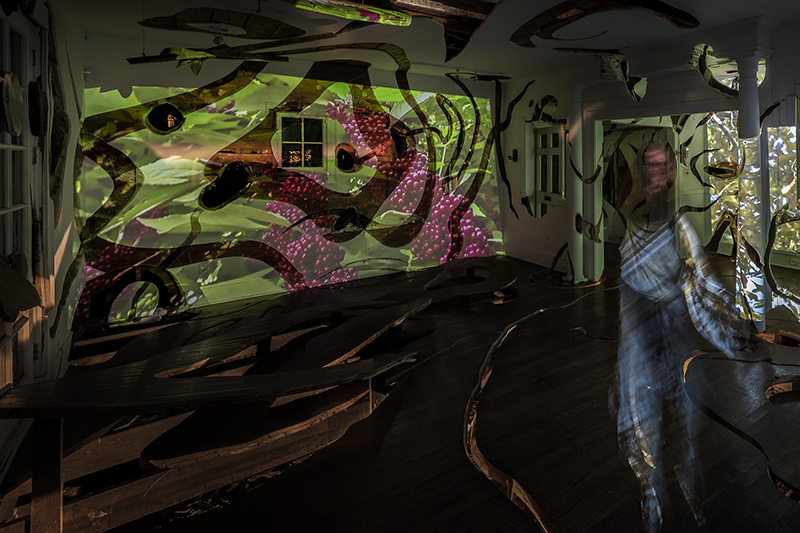 "Allison Hunter, installation view, ""Inside/Out,"" 2018, 7-channel video installation, Cherryhurst House, Houston, TX."
