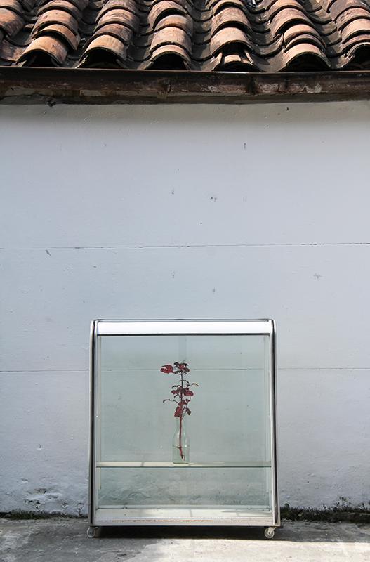 MEDELLIN, Digital Photography, 40 x 31 inches, each. 2014