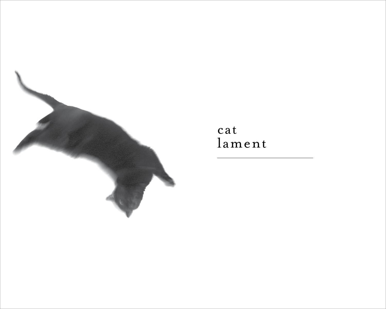 Cat_Lament2.jpg