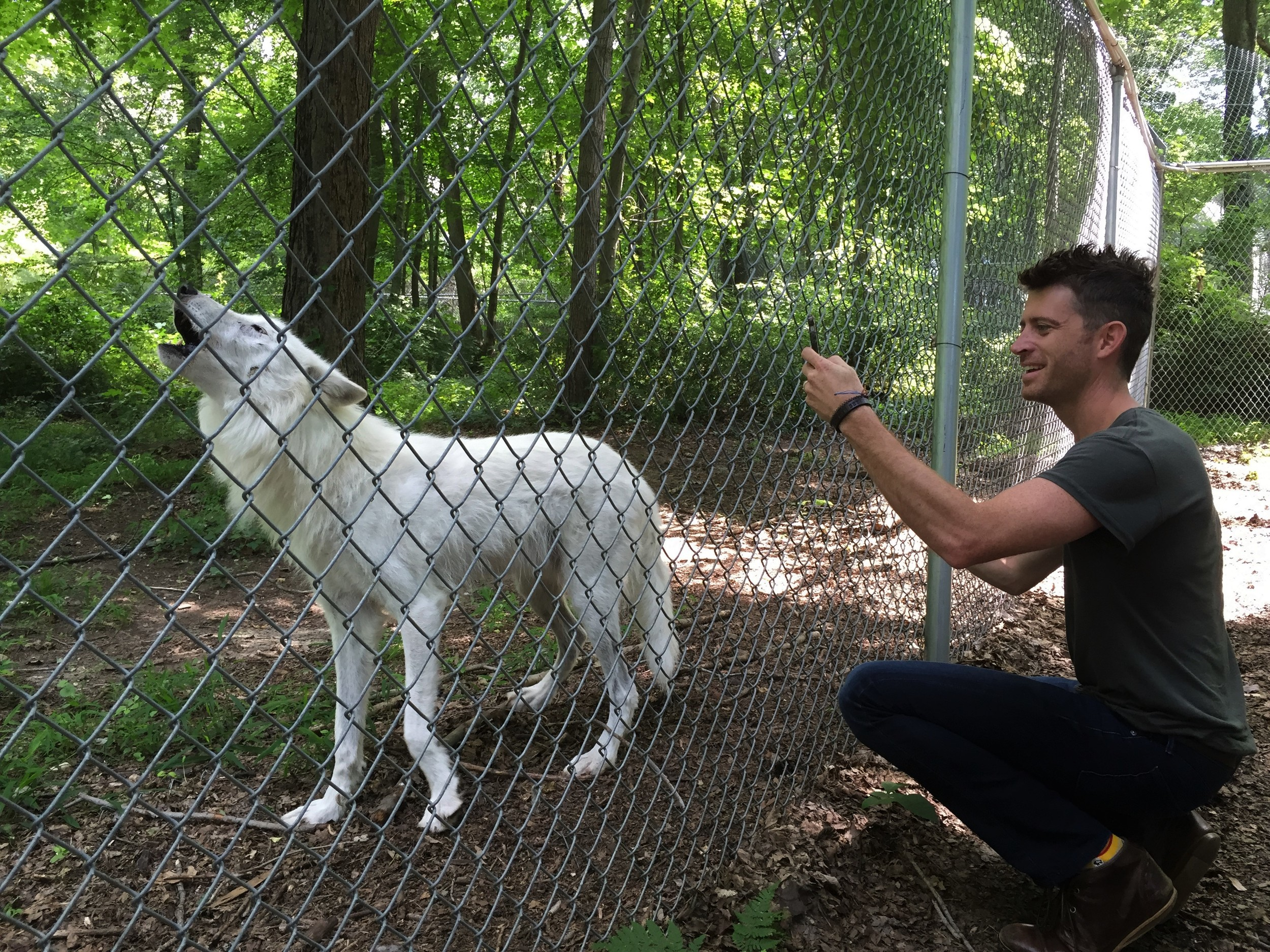 Brendan meets Atka at the Wolf Conservation Center, South Salem, NY