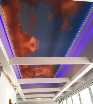 Restaurant Designer LED Ceiling Mural