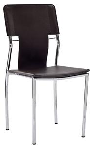Zebra Modern Chrome Chair