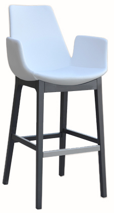 Bulleted Contemporary Barstool