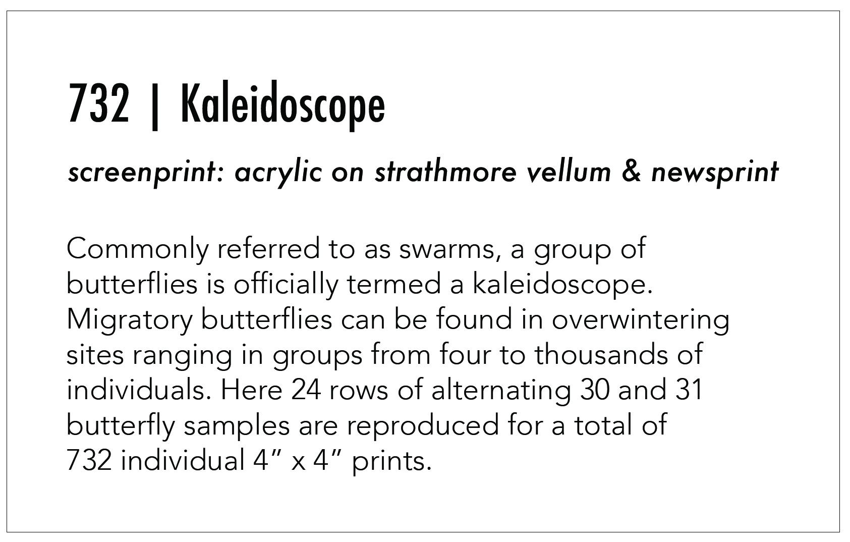 Kaleidoscope_About.jpg