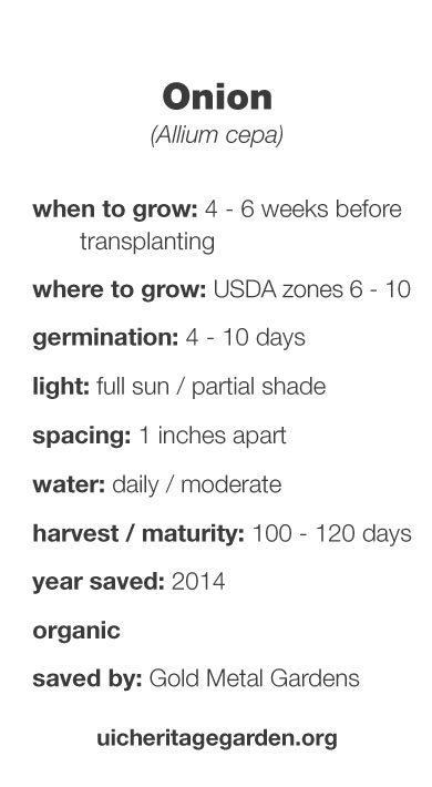 Onion growing information