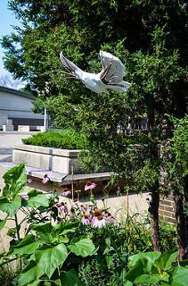 dove like bird sculpture
