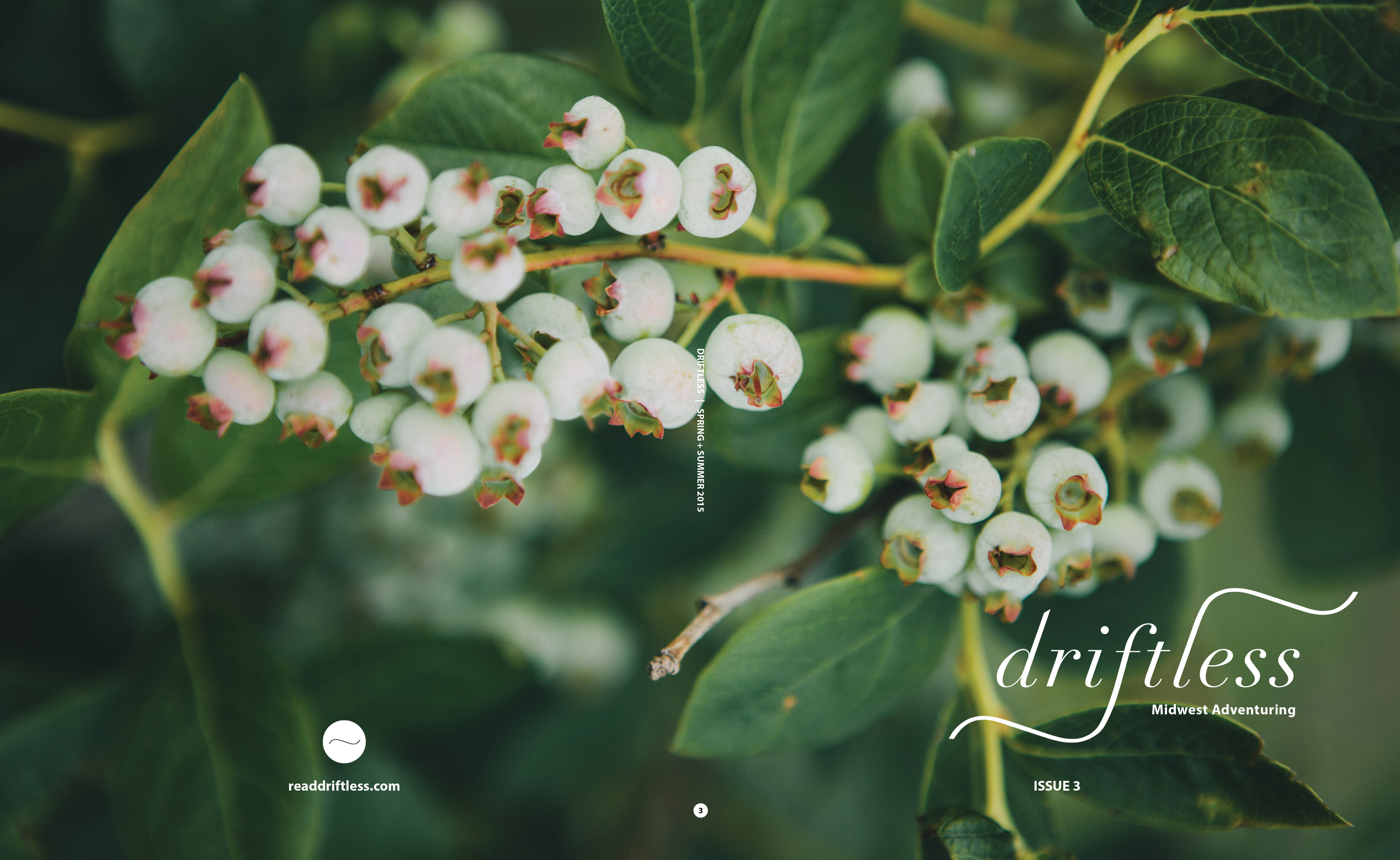 driftless_iss3_print_covers.jpg