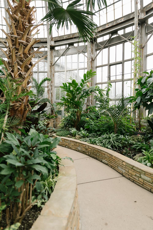 greenhouse-conservatory-plants-driftless-magazine
