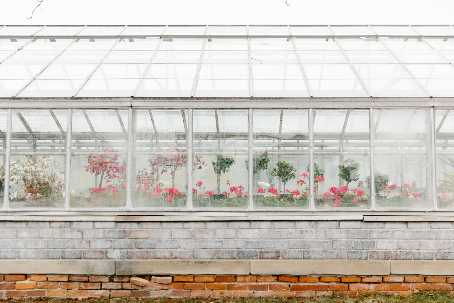 The Anna Scripps Whitcomb Conservatory is a greenhouse and a botanical garden located on Belle Isle, a 982-acre island park located in the Detroit River between Detroit and the Canada–United States border.