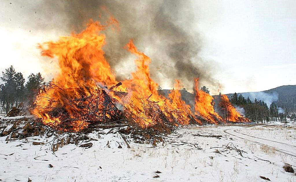 pile burn.jpg