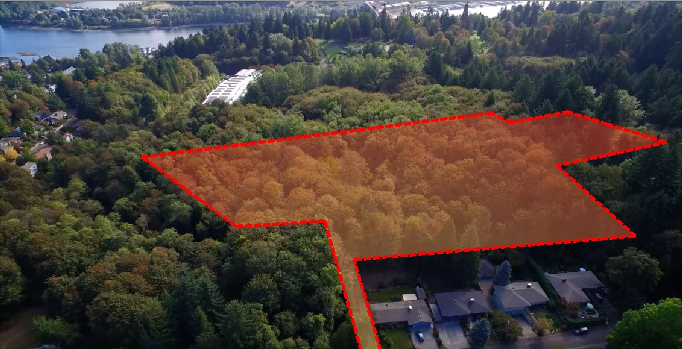 Red highlighted area locates where the homes will be located - trees will be removed beyond the red box to prepare the construction site.