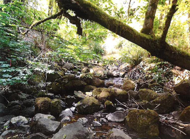 Environmental Overlay zone at risk