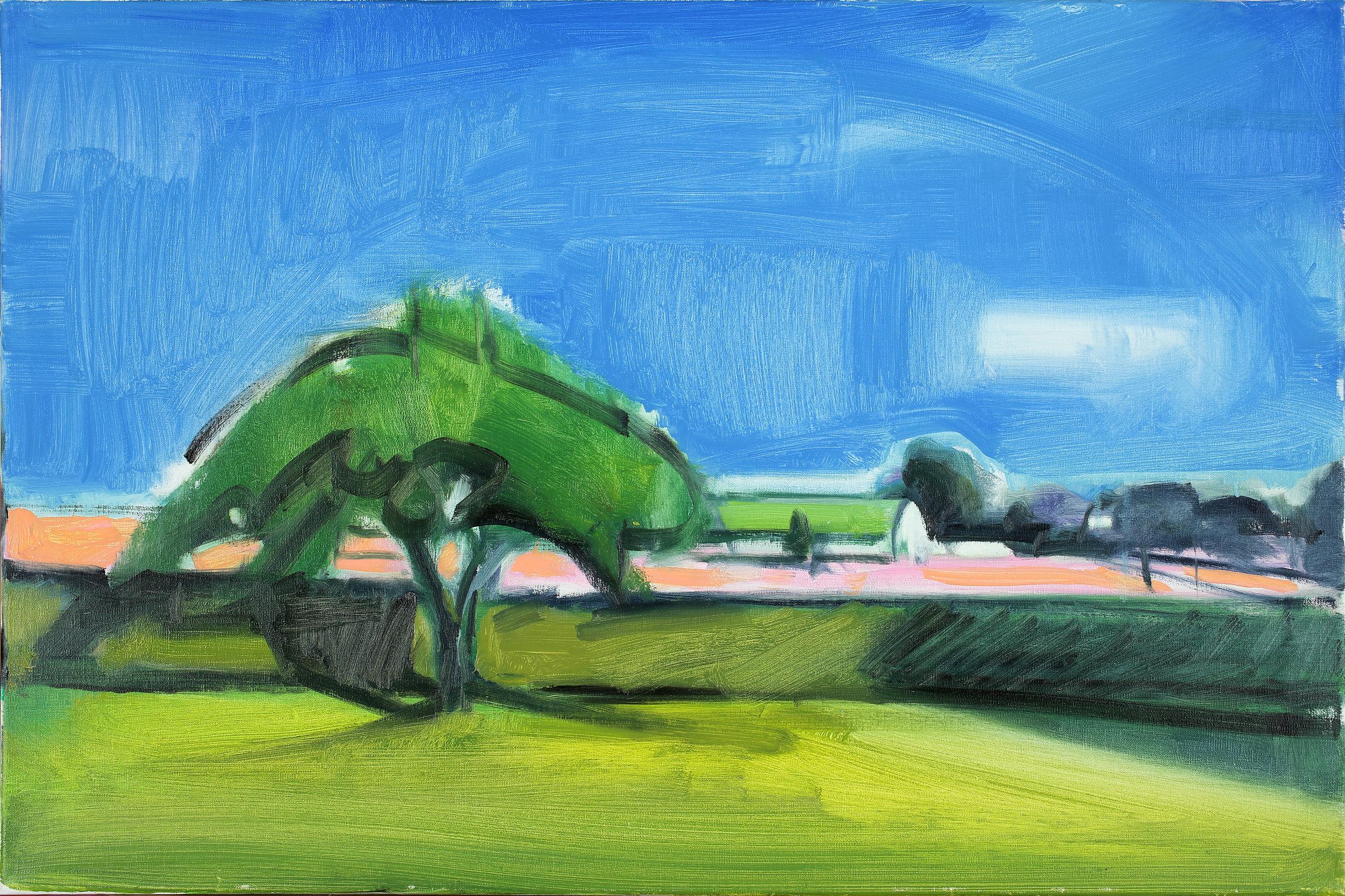 ELIZABETH HIGGINS APPLE TREE AND FLOWER FARM