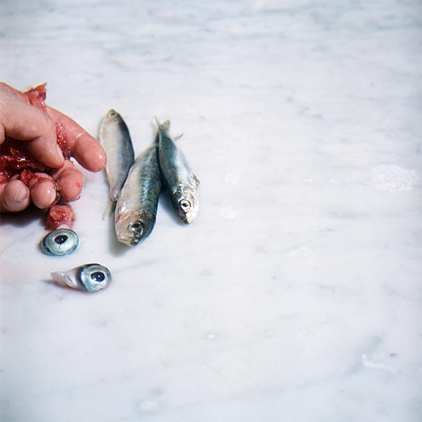 fish edit 1.jpg