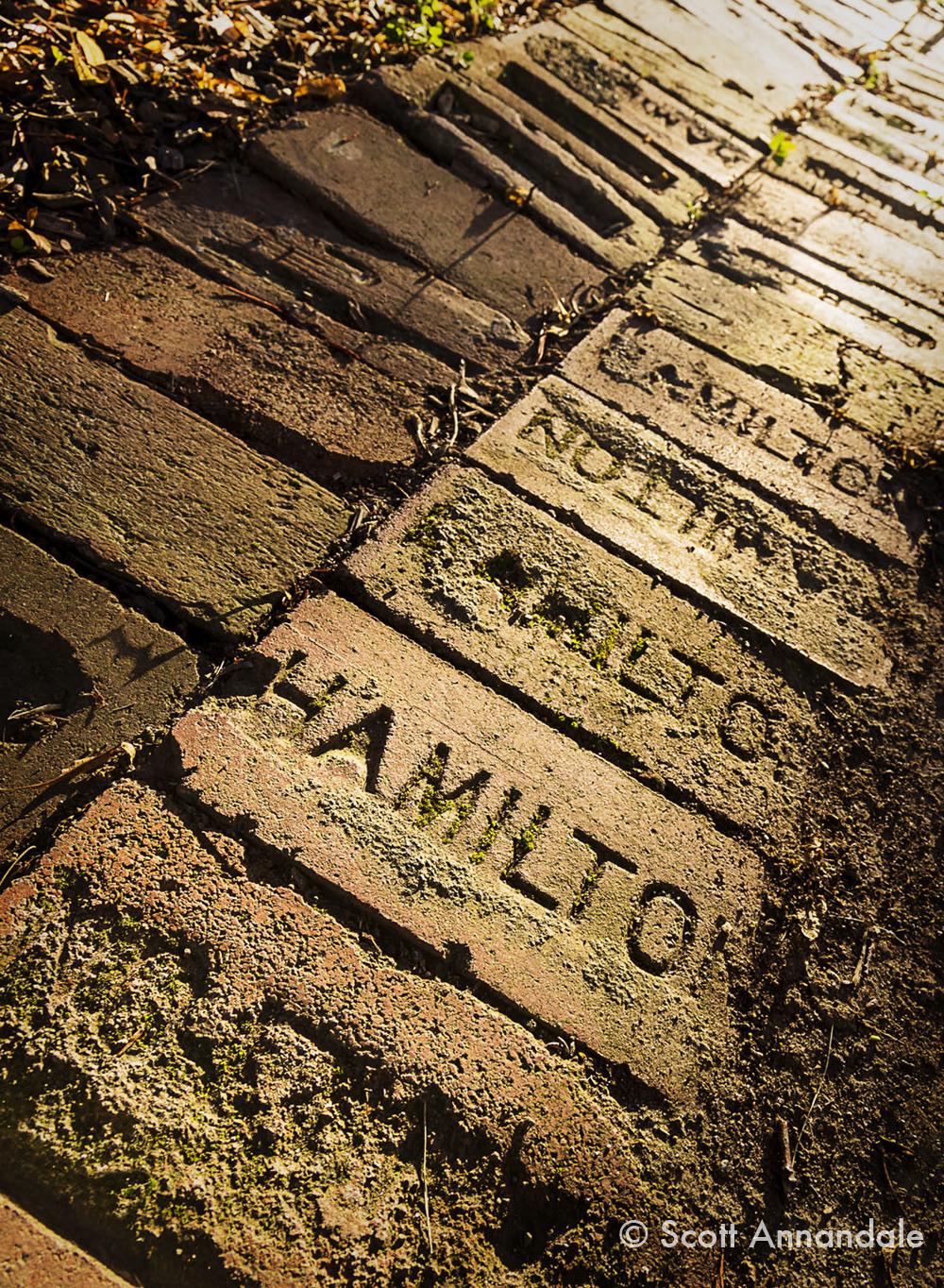 Hamilton Bricks sm©.jpg