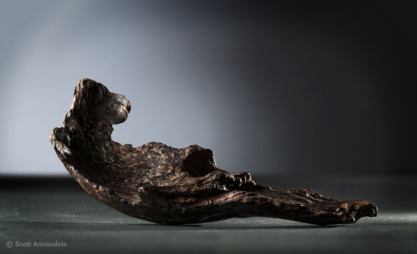 Untitled Wood Sculpture