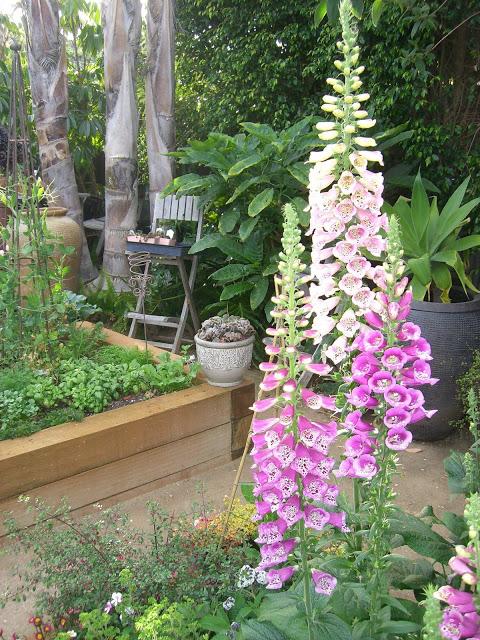 floral.flower.garden