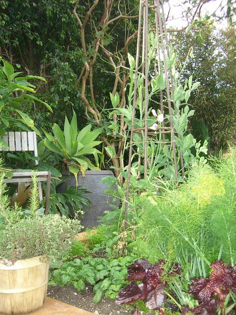 garden.edible.green