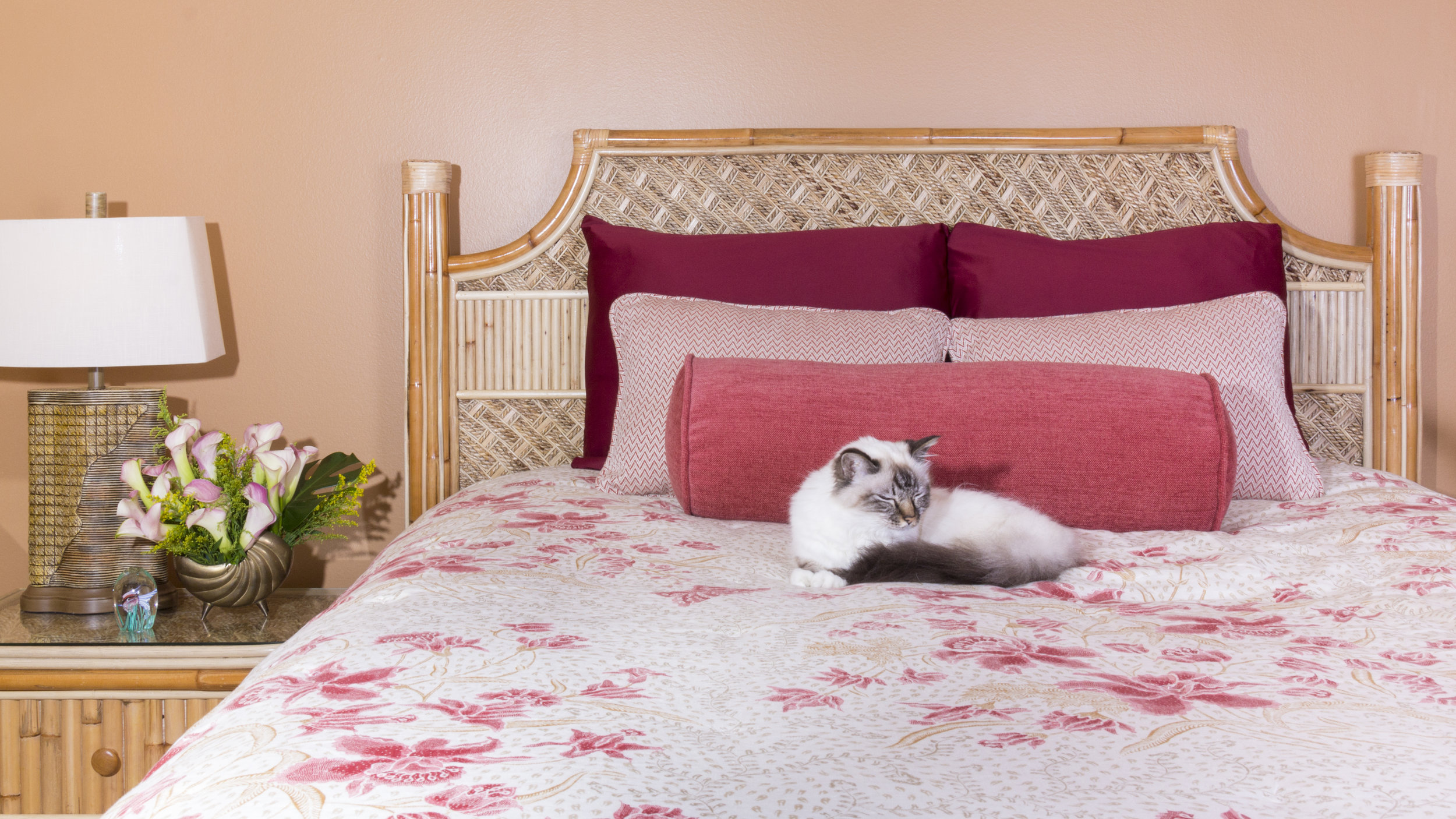 The family cat is the primary resident of this Manhattan Beach guest suite featuring a pink and coral color scheme.