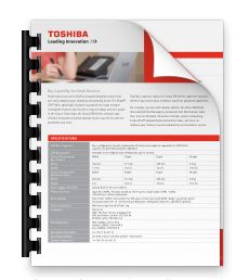 Download Strata CIX40Data Sheet