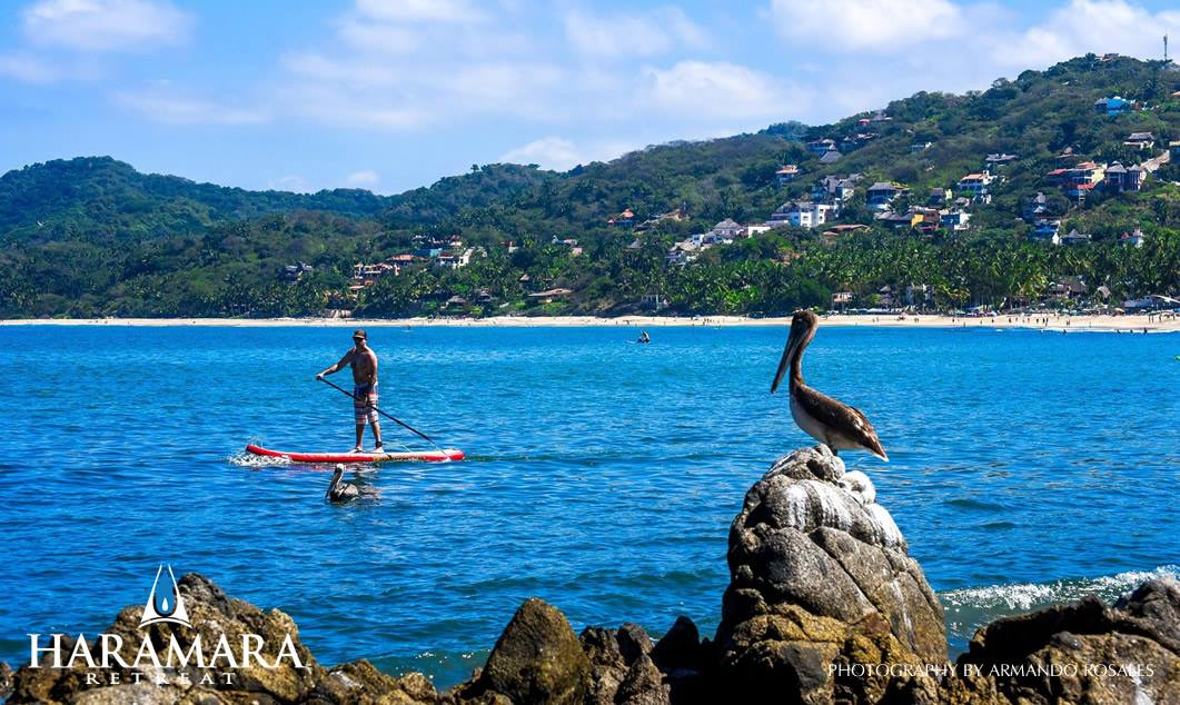 Stand-up paddleboarding available!