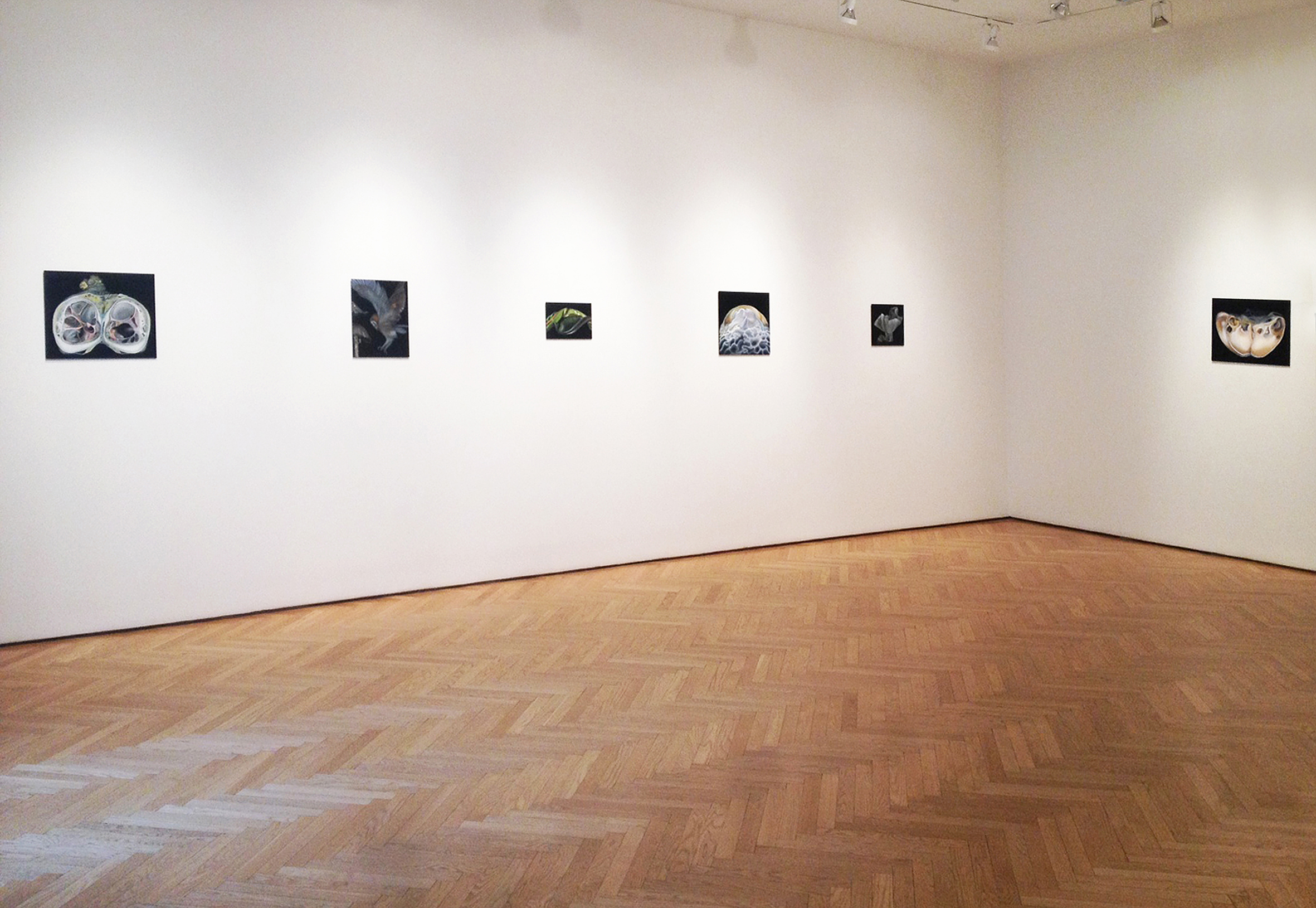 Copy of Stellan Holm gallery, 2014, New York