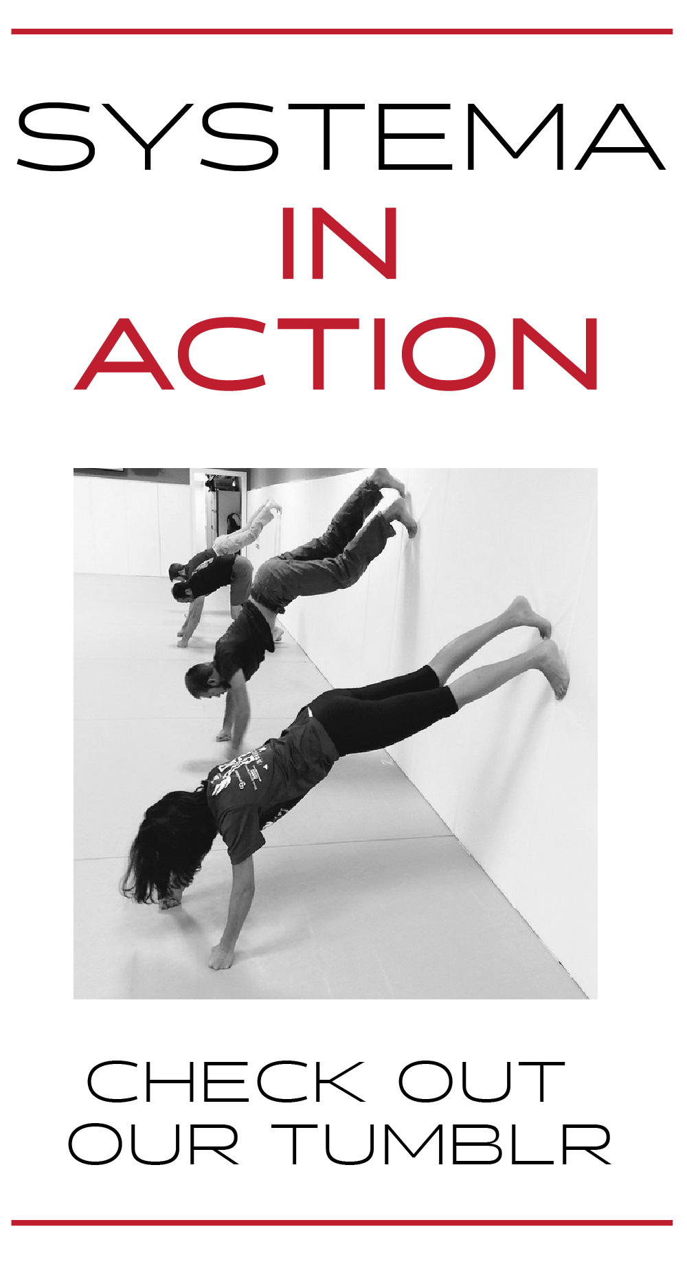 Systema-In-Action-01.png