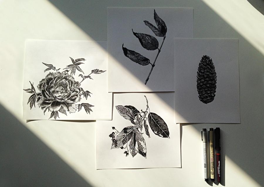 Draw 05.jpg