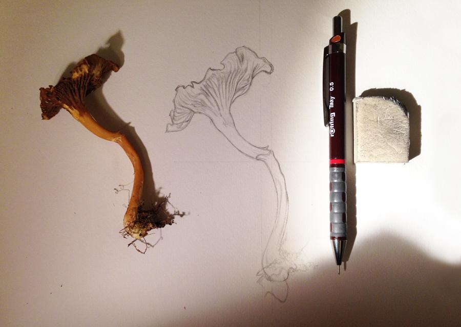 Draw 09.jpg