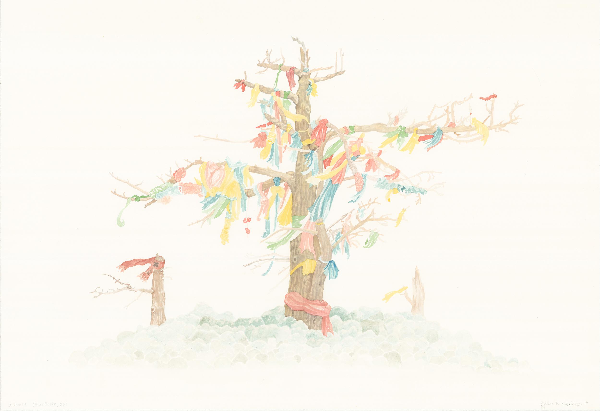 Ponderosa Dwarf Pines, Bear Butte, SD