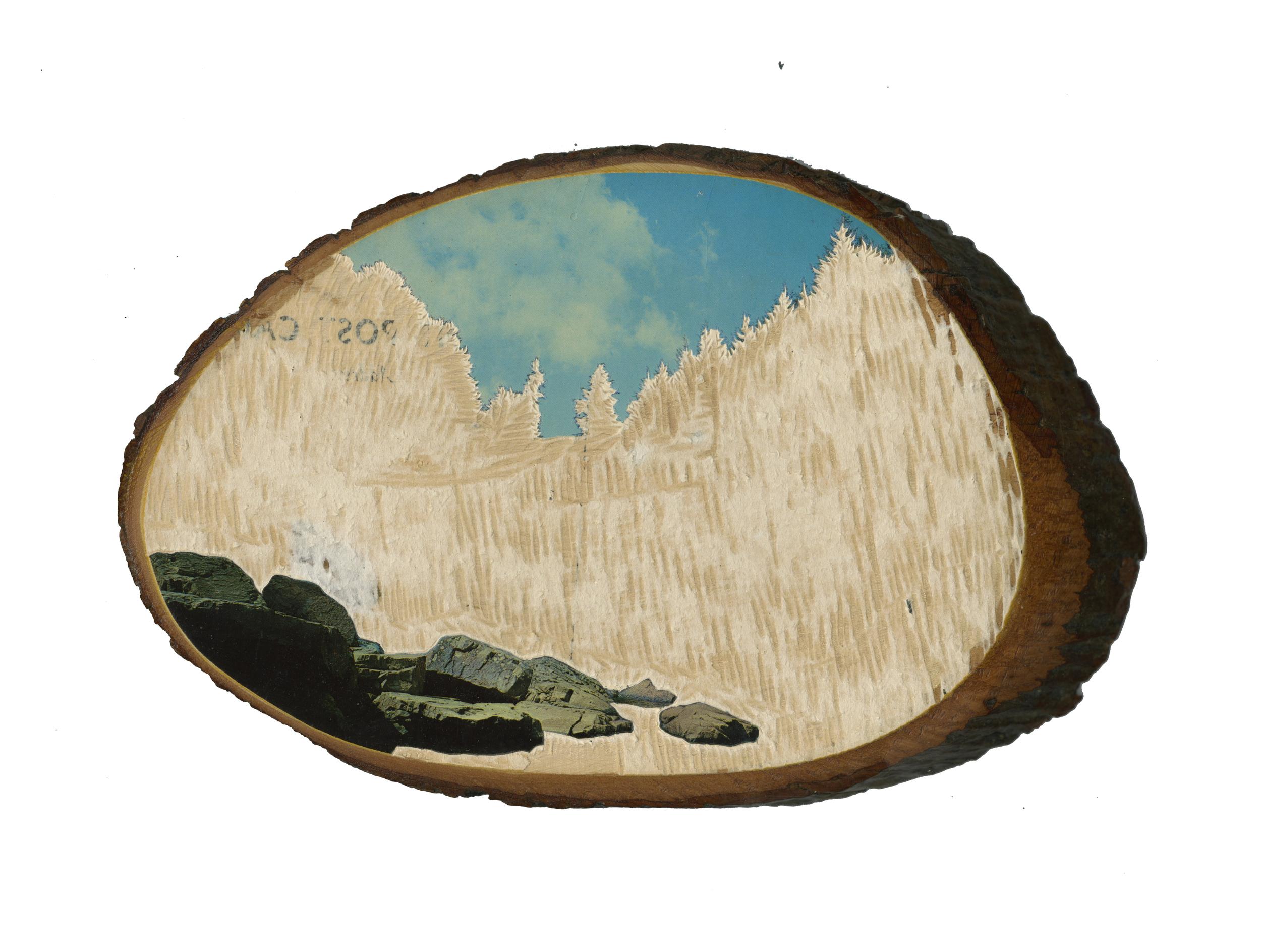 vista 4.jpg