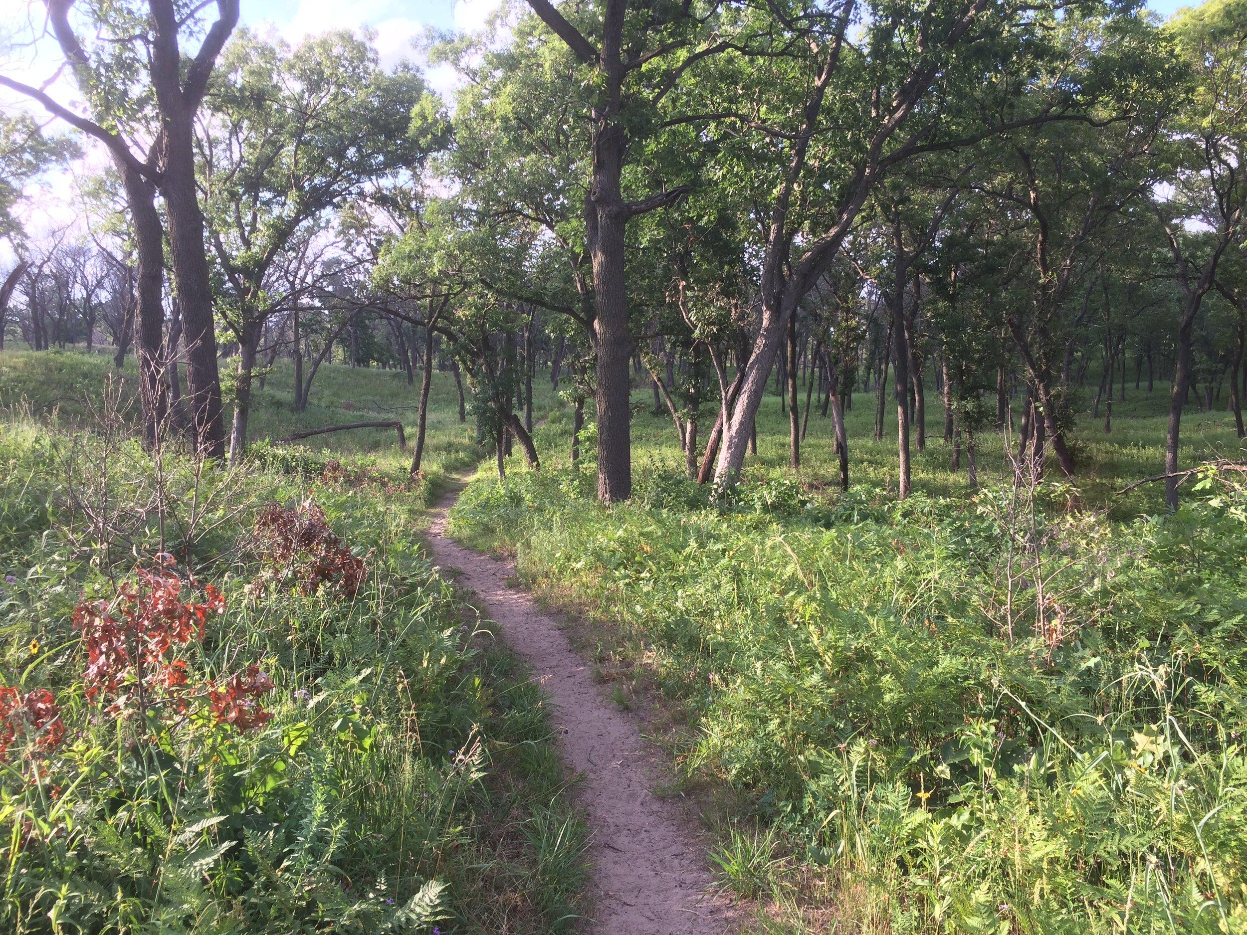 National Park Trail