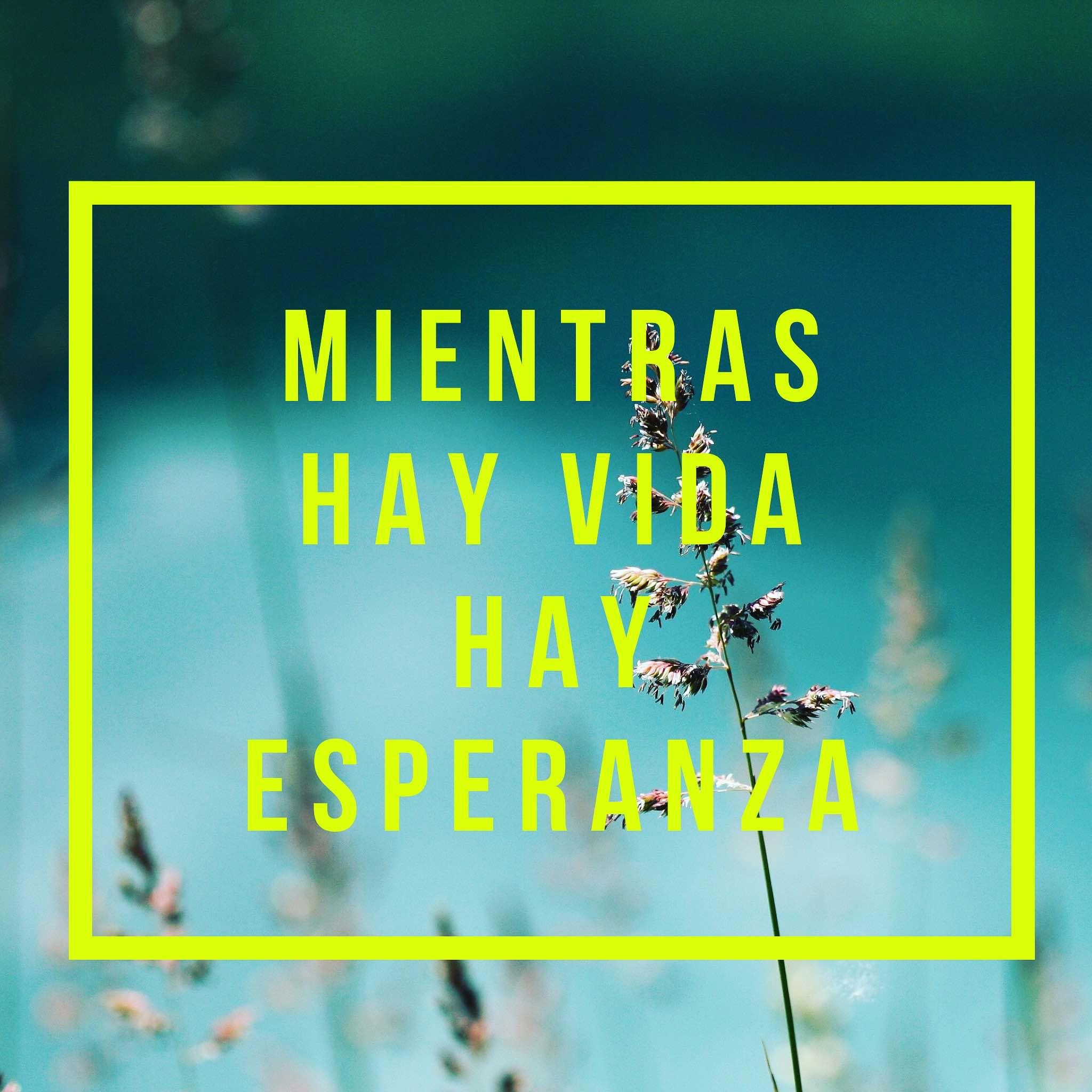Read Spanish Phrases — Mientras hay vida hay esperanza