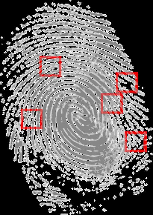 Se utilizan las huellas digitales para identificar a los criminales.