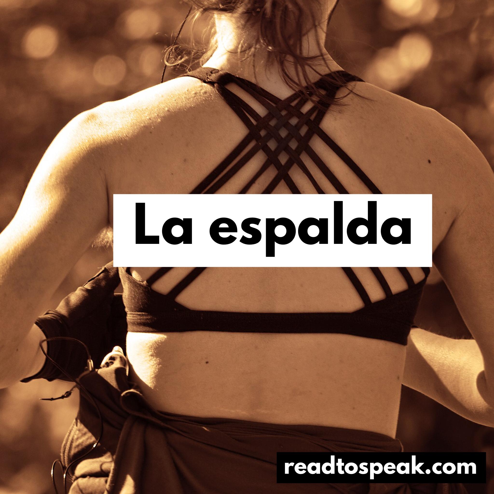 Read to Speak Spanish - la espalda.PNG