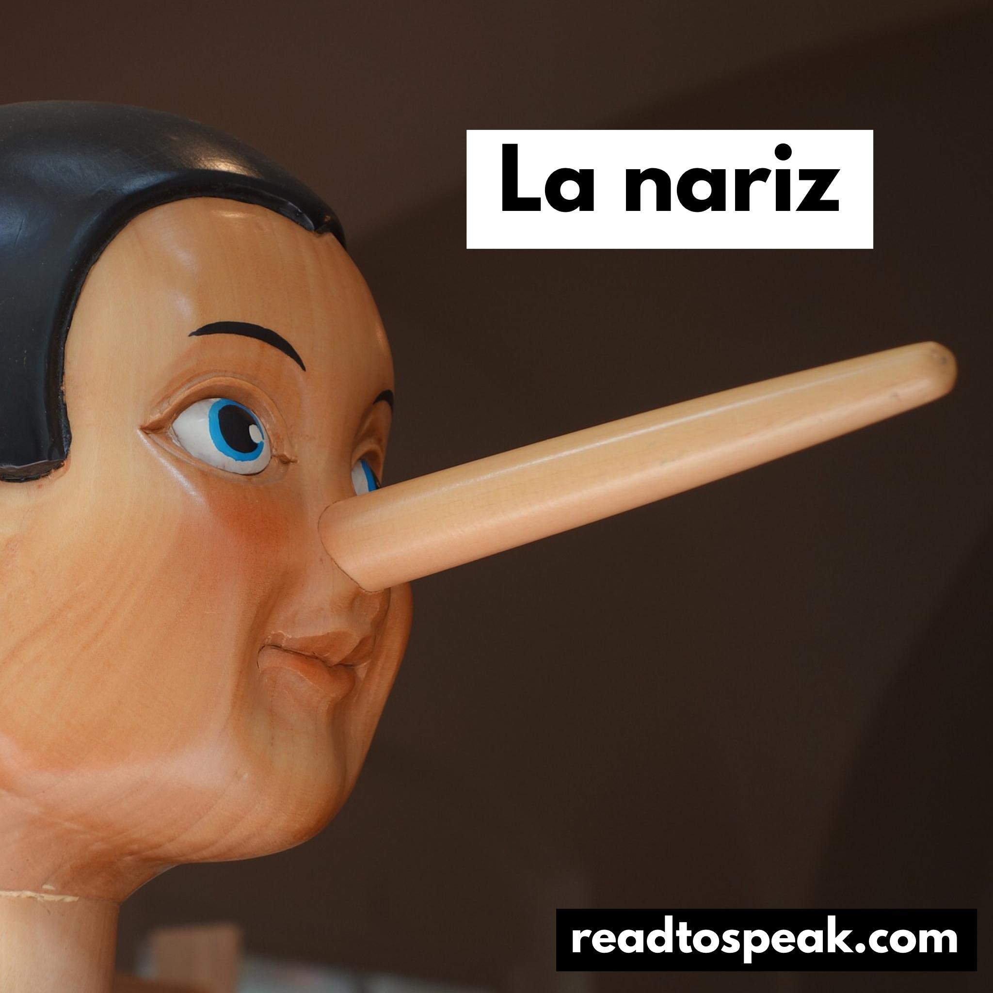 Read to Speak Spanish - la nariz.PNG