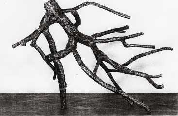 Bryan Nash Gill, Malus, 2005. Copper, lead, and apple tree, 57.5 x 77 x 68 in.